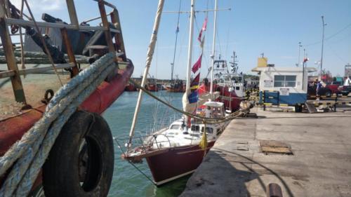 12.-Mar del Plata 6