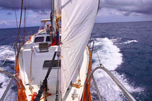 12.- El Pros en navegacion