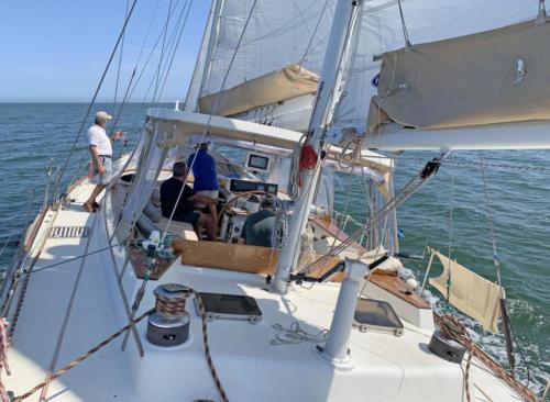 15.- Un buen dia de navegación